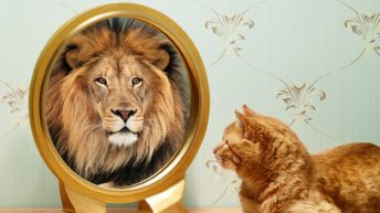 What are Self-Image and Self-Esteem, and How Can You Improve Low Self-Image?